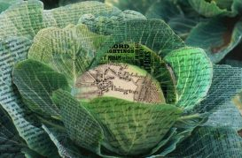 Cabbage Rebellion: Paignton's Missing Protest